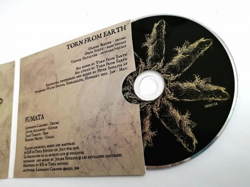 Split de Fumata con Torn from Earth